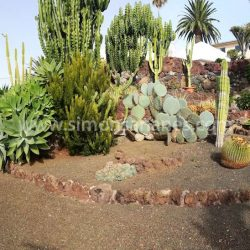 Garten Westen. Chalet Jardin del Sol