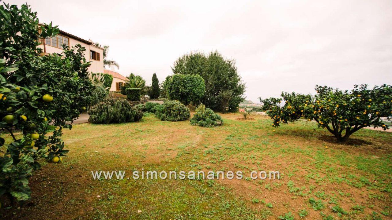 Luxus Villa La Orotava. Obstgarten
